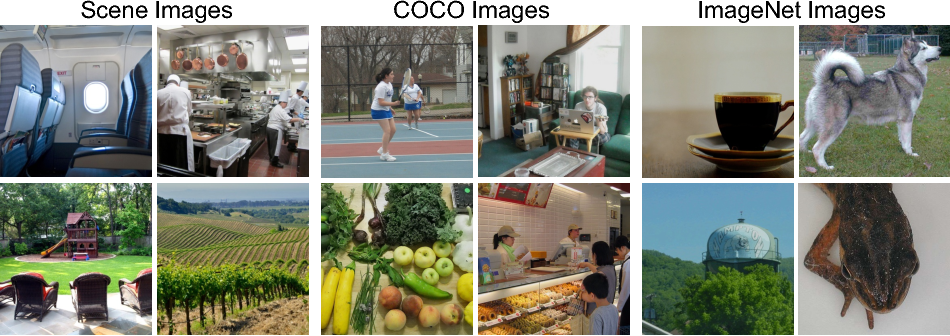 Figure 1 for BOLD5000: A public fMRI dataset of 5000 images