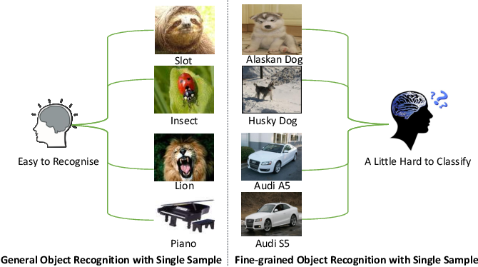 Figure 1 for Low-Rank Pairwise Alignment Bilinear Network For Few-Shot Fine-Grained Image Classification