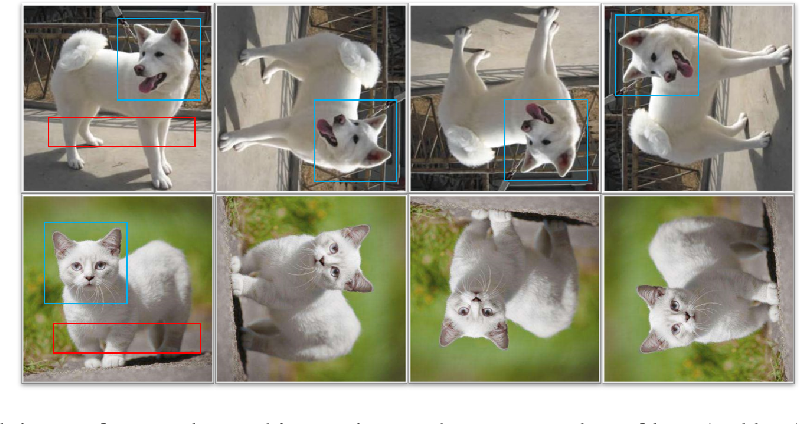 Figure 1 for Self-Supervised Learning Aided Class-Incremental Lifelong Learning