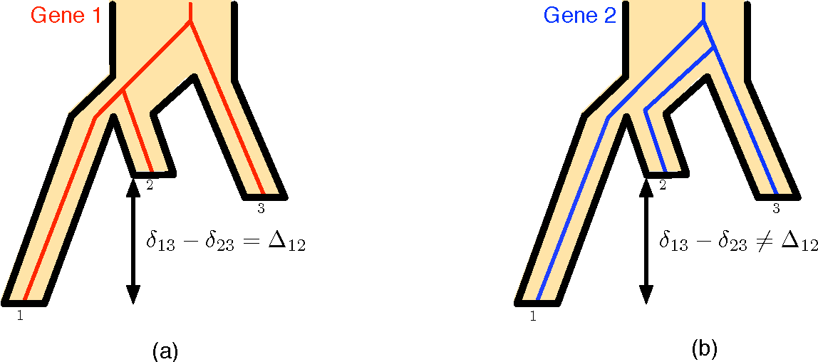 Figure 3 for Coalescent-based species tree estimation: a stochastic Farris transform