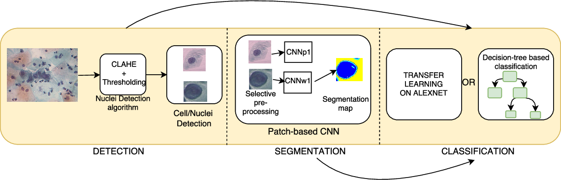 Figure 1 for Considerations for a PAP Smear Image Analysis System with CNN Features