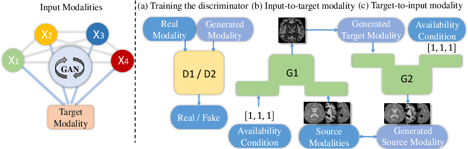 Figure 1 for DiamondGAN: Unified Multi-Modal Generative Adversarial Networks for MRI Sequences Synthesis