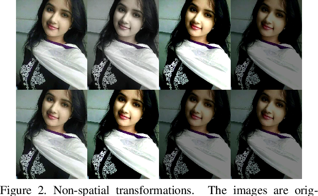 Figure 3 for EnAET: Self-Trained Ensemble AutoEncoding Transformations for Semi-Supervised Learning
