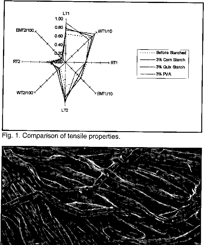 Fig. 4. Yarn surface coated with wheat starch.