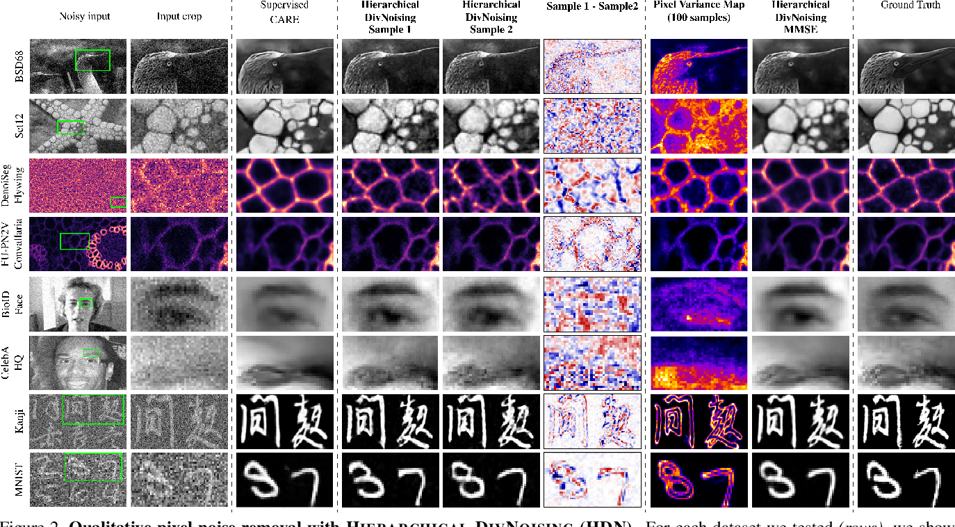 Figure 3 for Removing Pixel Noises and Spatial Artifacts with Generative Diversity Denoising Methods
