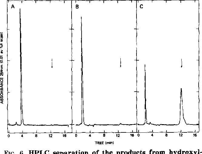 Figure 6 from Stability of ADP-ribose ( Arginine ) Protein