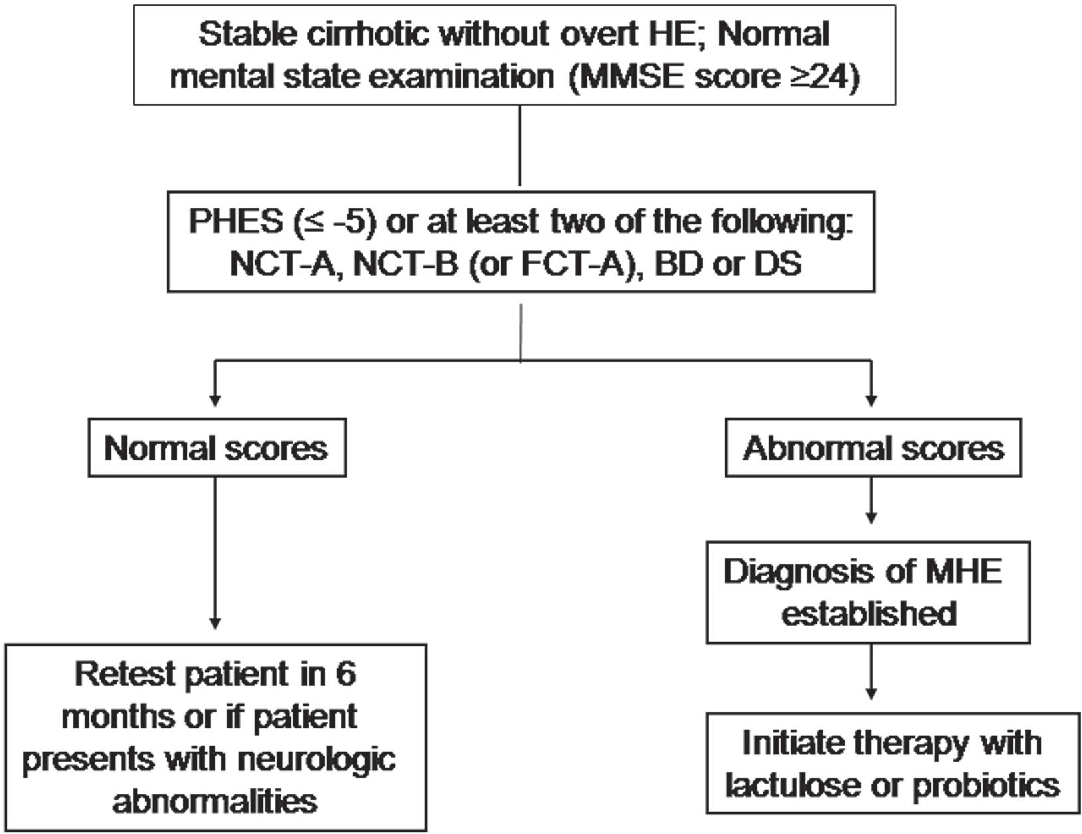 Figure 2 from minimal hepatic encephalopathy semantic scholar fig 2 treatment algorithm for patients with minimal he nct number connection test buycottarizona Image collections
