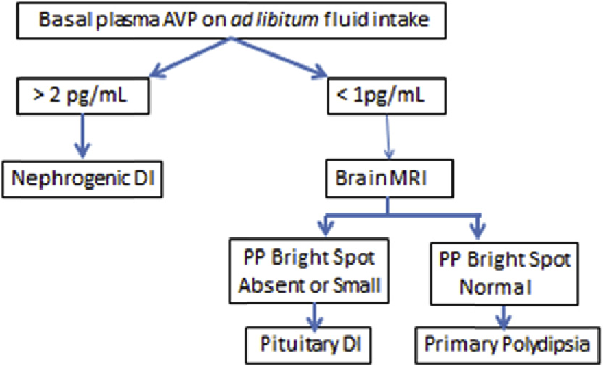 Figure 4 From Diabetes Insipidus Differential Diagnosis And