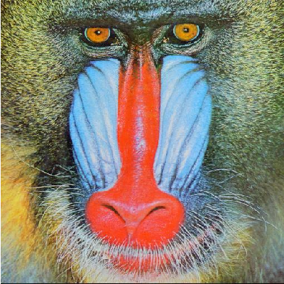 Fig. 1. Original mandrill image