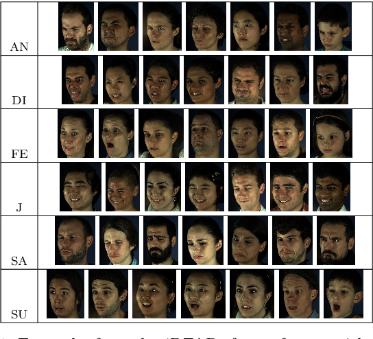 Figure 1 for Generating faces for affect analysis