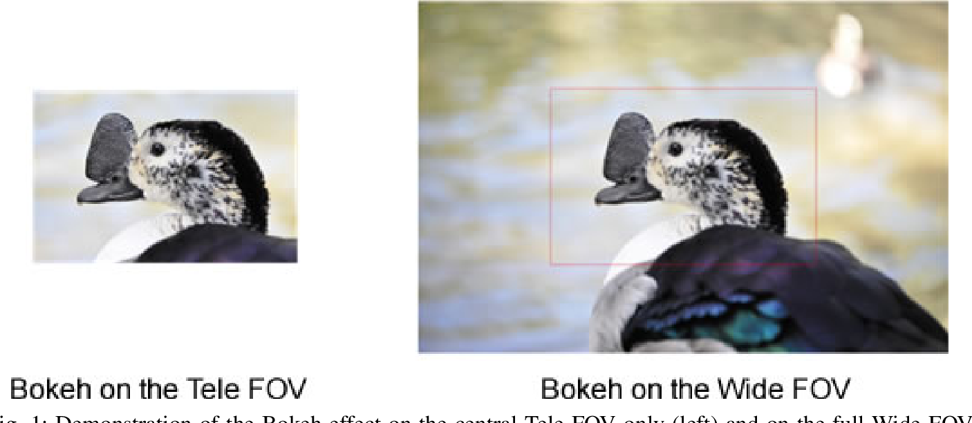 Figure 1 for TW-SMNet: Deep Multitask Learning of Tele-Wide Stereo Matching