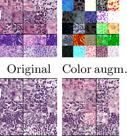 Figure 2 for A Closer Look at Domain Shift for Deep Learning in Histopathology