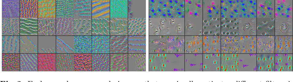 Figure 3 for A Closer Look at Domain Shift for Deep Learning in Histopathology