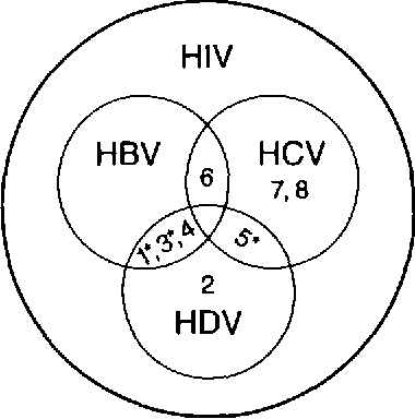 Figure 1 From Suppression Of Hepatitis C Virus Hcv Replication By