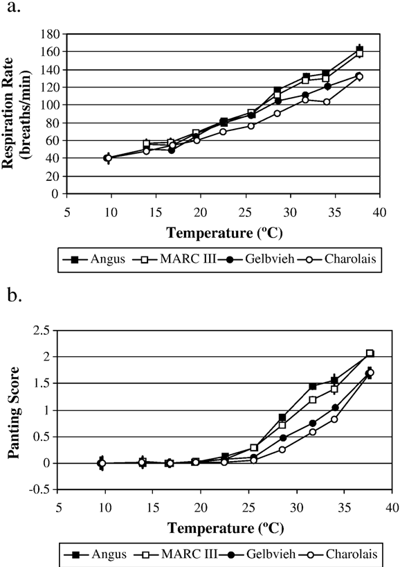 Fig. 2. Respiration rate (a) and panting score (b) response differences between feedlot heifers of four differing breeds (Angus – black MARC III – dark-red; Gelbvieh – tan; and Charolais – white). Erro bars represent the standard error associated with each point.