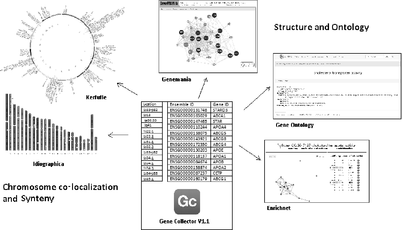 Figure 5 from Gene Collector V 1   1 : a user-friendly