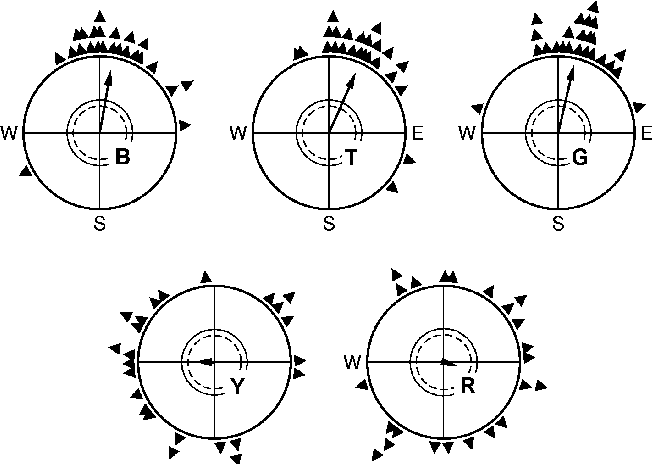 Magnetic Compass Orientation In Birds And Its Physiological Basis