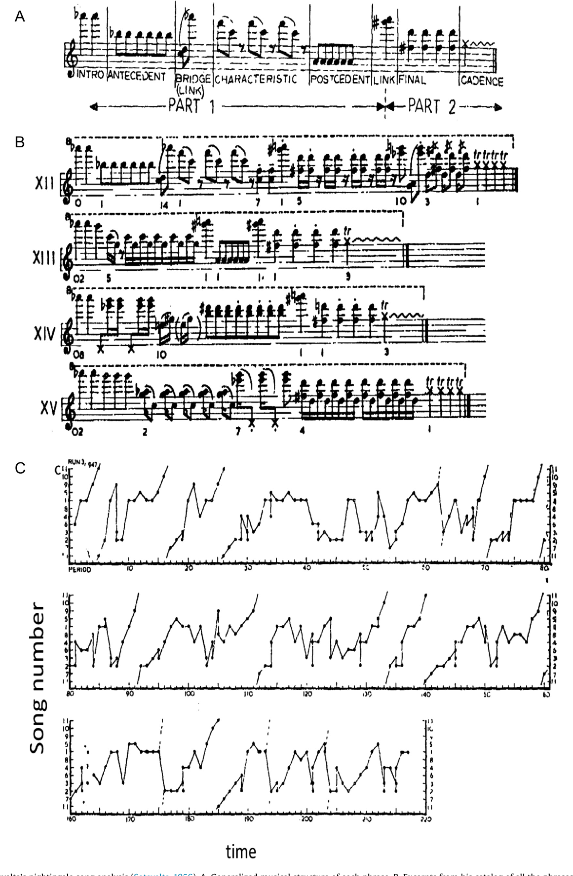 Investigation of musicality in birdsong - Semantic Scholar