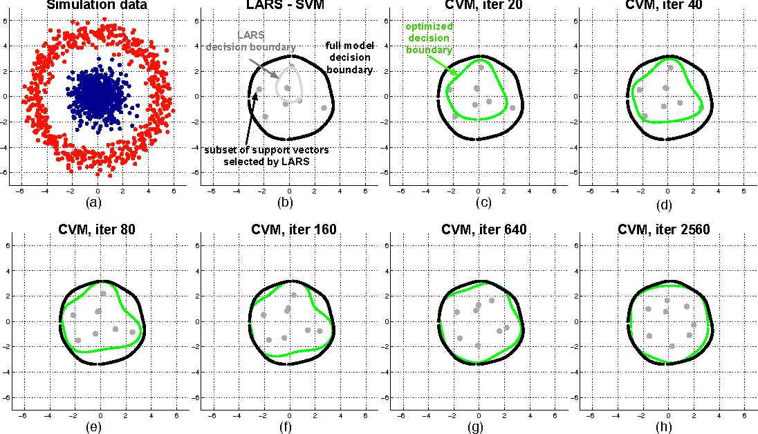 Figure 3 for Compressed Support Vector Machines