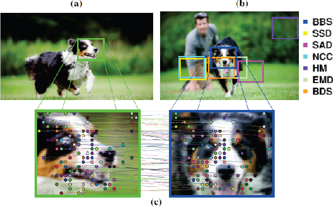 Figure 1 for Best-Buddies Similarity - Robust Template Matching using Mutual Nearest Neighbors