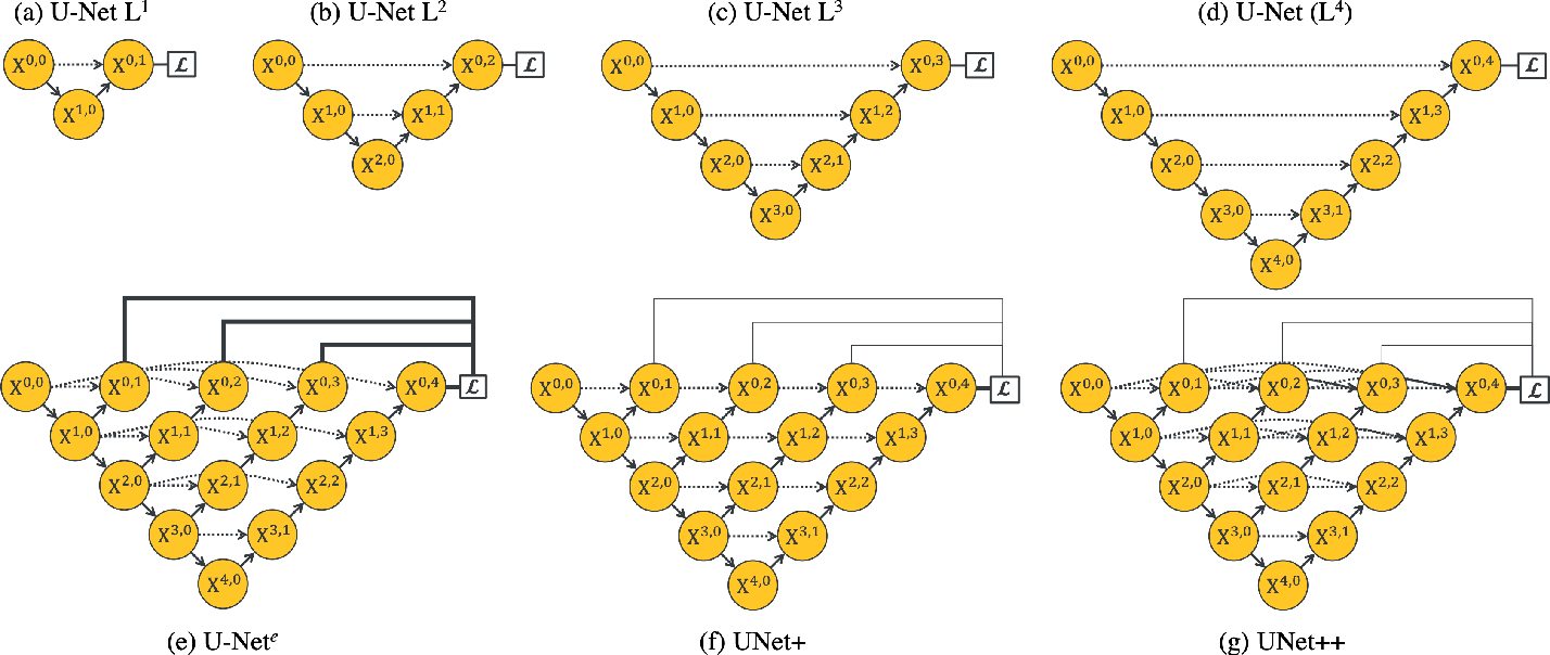 Figure 1 for UNet++: Redesigning Skip Connections to Exploit Multiscale Features in Image Segmentation