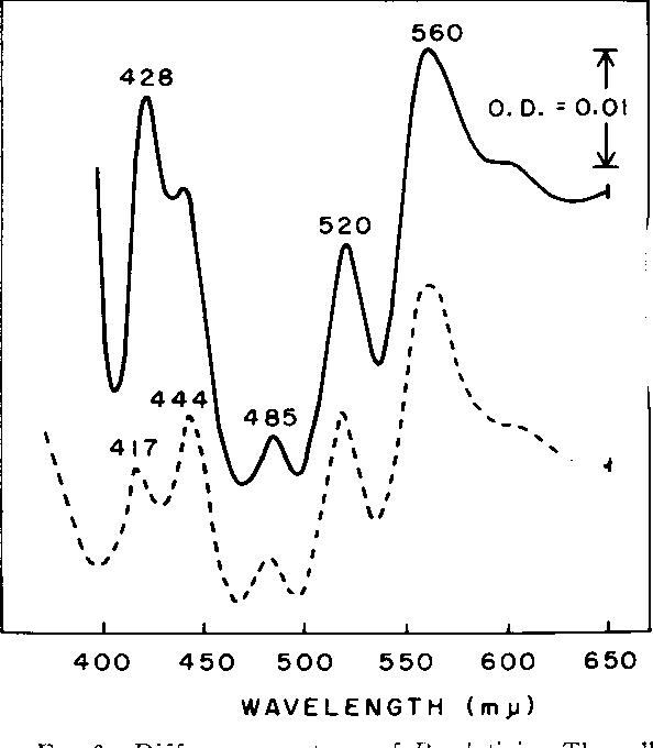 Figure 3 from respiratory system of rhodotorula glutinis i figure 3 ccuart Choice Image