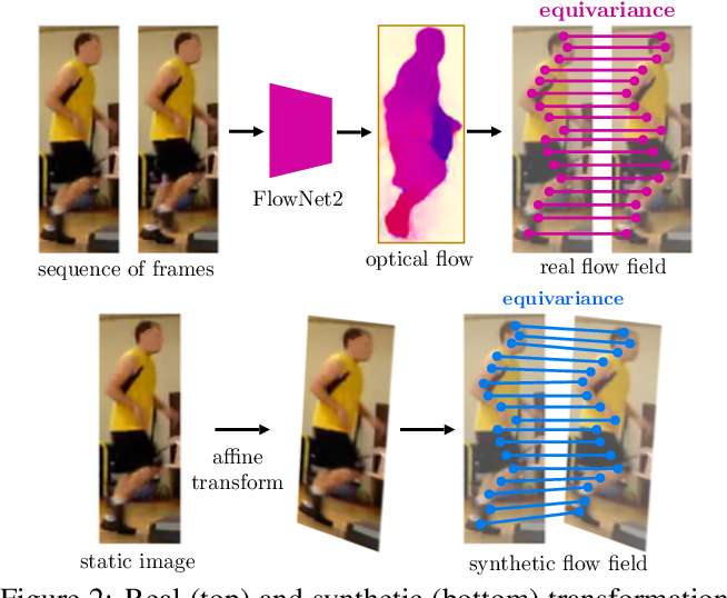 Figure 2 for Slim DensePose: Thrifty Learning from Sparse Annotations and Motion Cues
