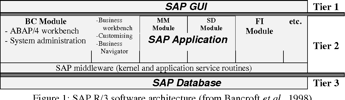 Information and Business Process Equality : The Case of SAP R / 3