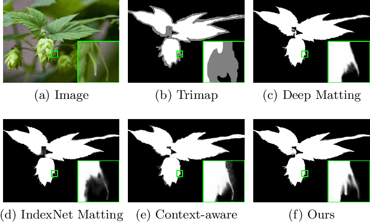 Figure 1 for Hierarchical Opacity Propagation for Image Matting