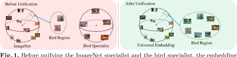 Figure 1 for Unifying Specialist Image Embedding into Universal Image Embedding