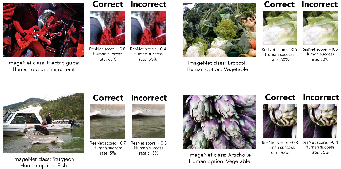 Figure 2 for Minimal Images in Deep Neural Networks: Fragile Object Recognition in Natural Images