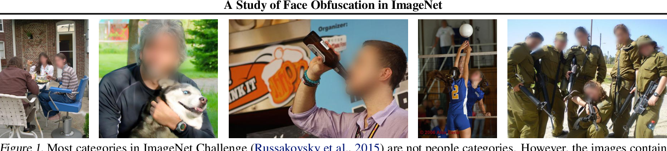 Figure 1 for A Study of Face Obfuscation in ImageNet