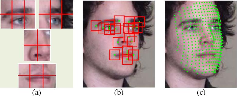 Figure 4 for A Comprehensive Survey on Pose-Invariant Face Recognition