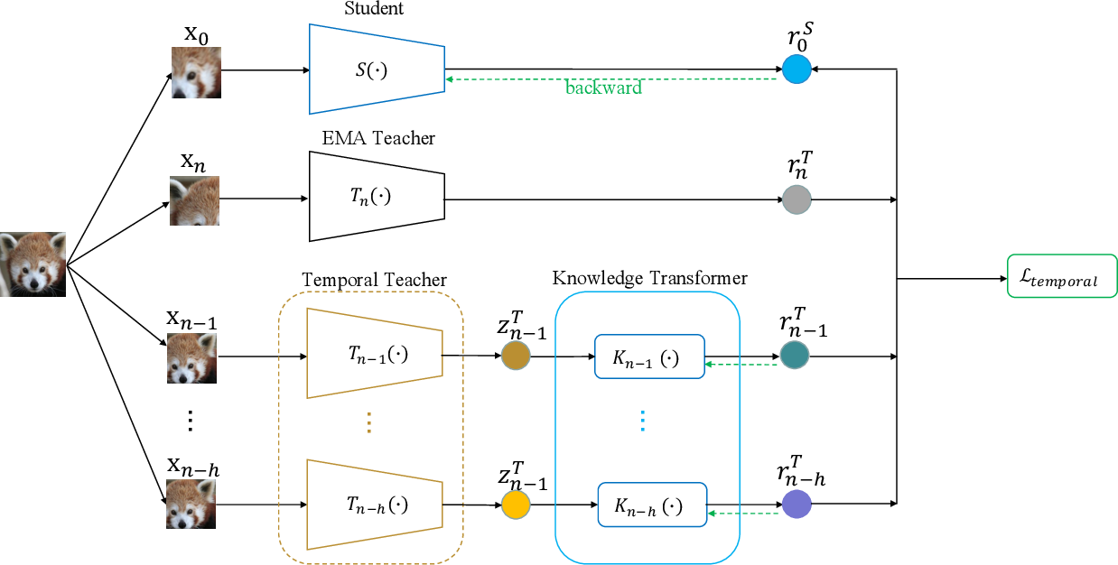 Figure 3 for Temporal Knowledge Consistency for Unsupervised Visual Representation Learning