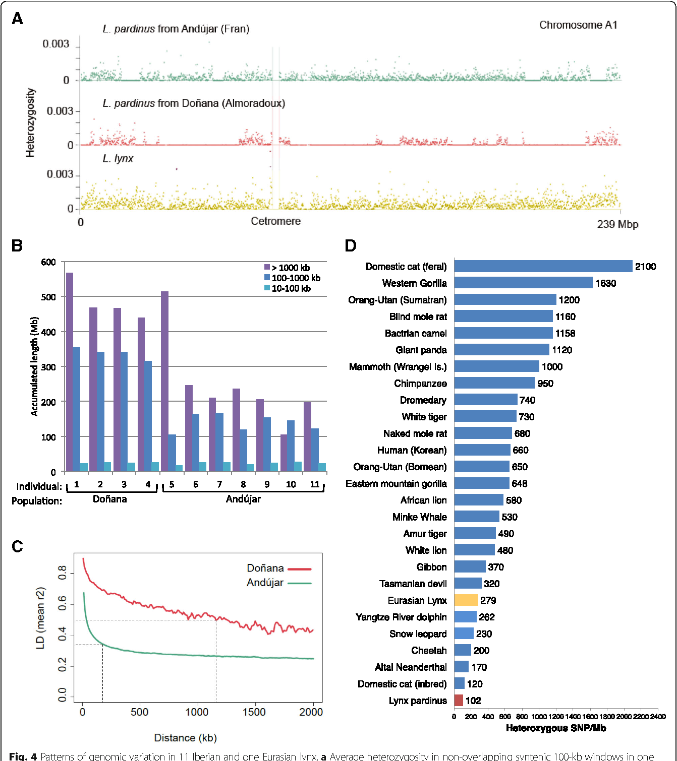 Figure 4 from Extreme genomic erosion after recurrent