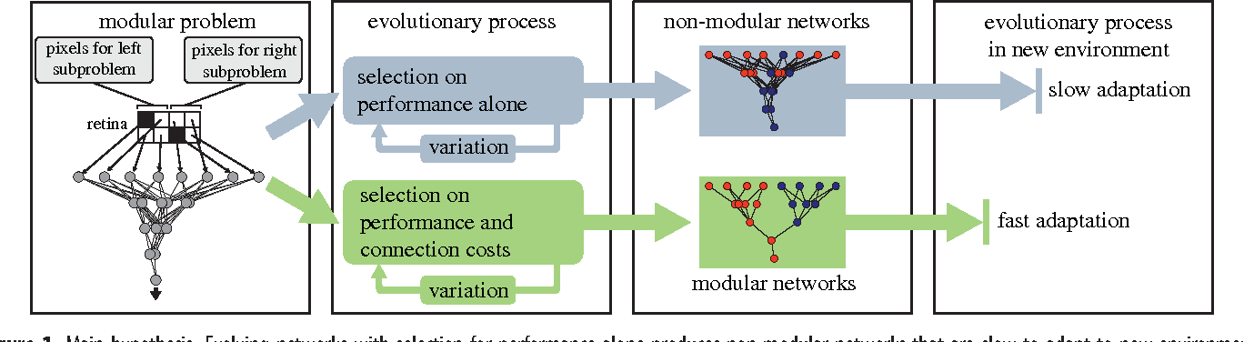 Figure 1 for The evolutionary origins of modularity