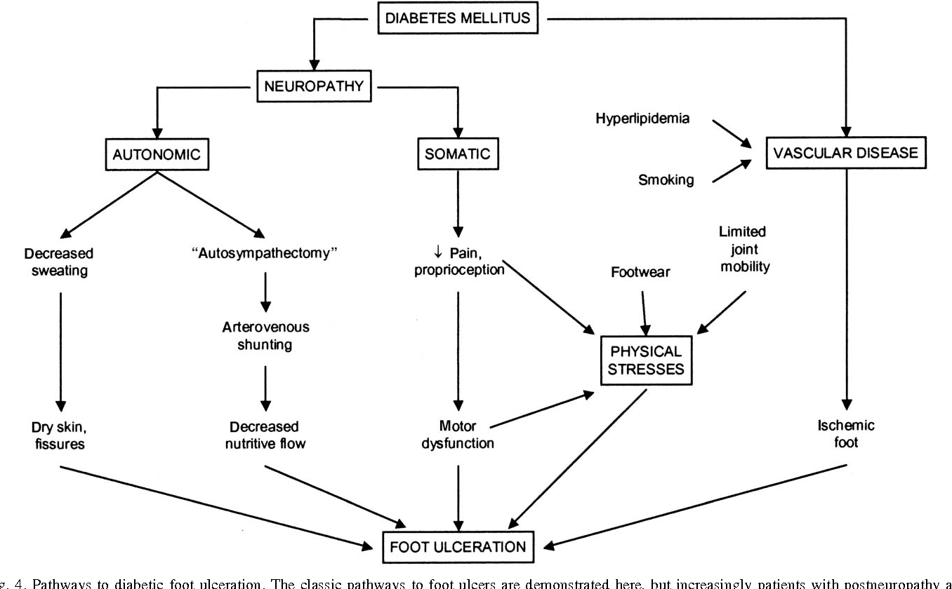 Pressure And The Diabetic Foot Clinical Science And Offloading