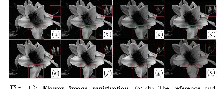 Figure 4 for Local Structure Matching Driven by Joint-Saliency-Structure Adaptive Kernel Regression