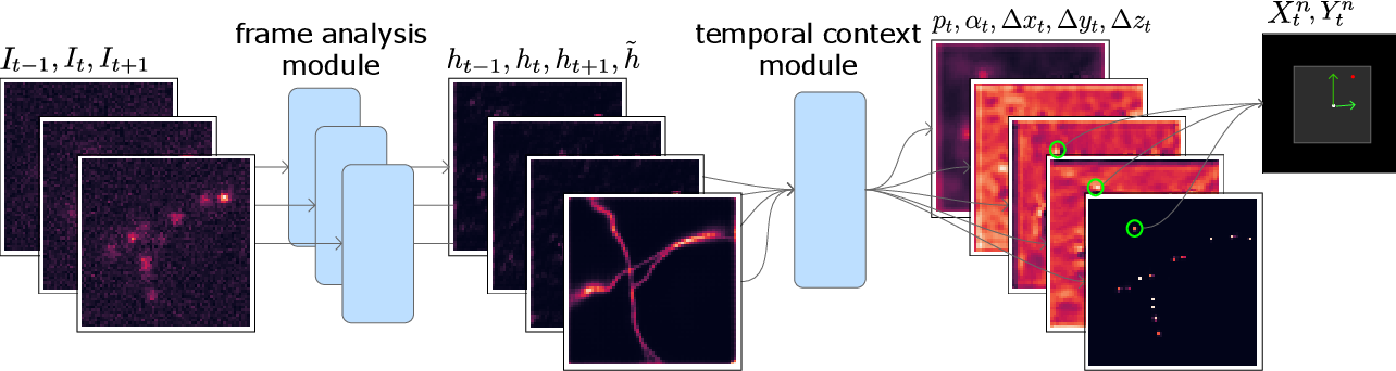 Figure 3 for Teaching deep neural networks to localize sources in super-resolution microscopy by combining simulation-based learning and unsupervised learning