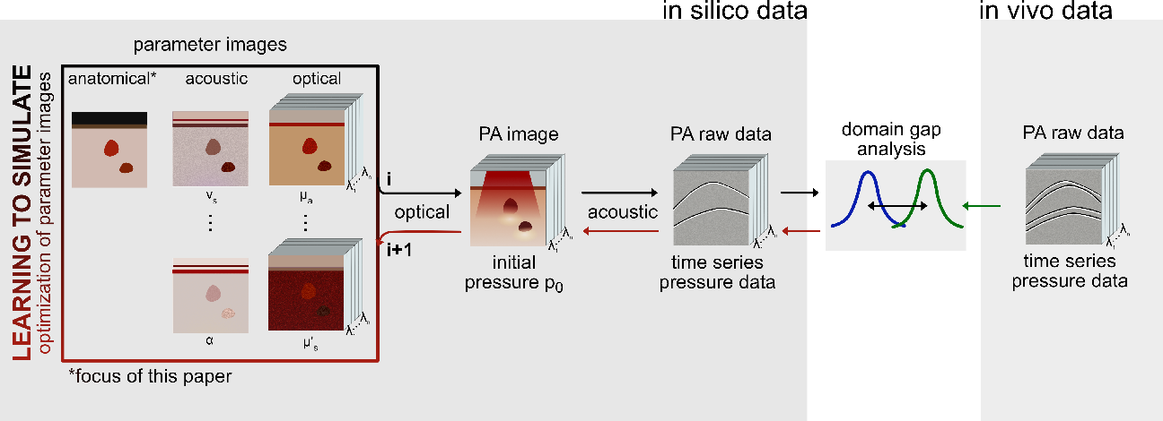 Figure 1 for Data-driven generation of plausible tissue geometries for realistic photoacoustic image synthesis