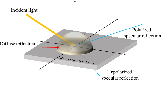Figure 3 for Polarization Guided Specular Reflection Separation