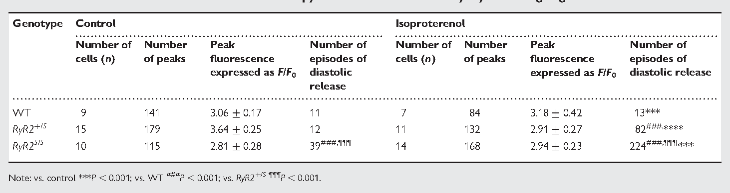 Table 4 Results of confocal fluorescence microscopy of fluo-3-loaded atrial myocytes during regular stimulation