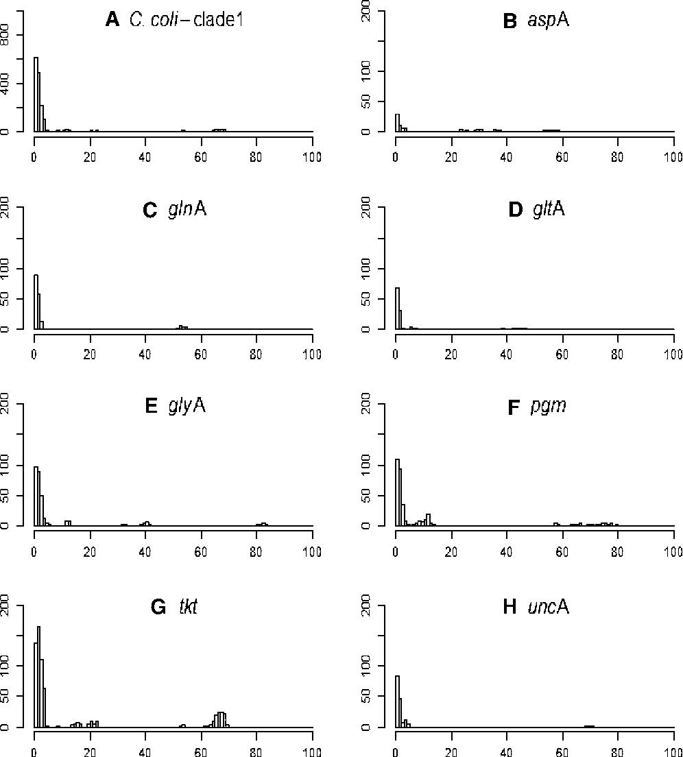 Campylobacter coli rRNA:PrThr:Pt:XXX:Ord:Probe - Semantic