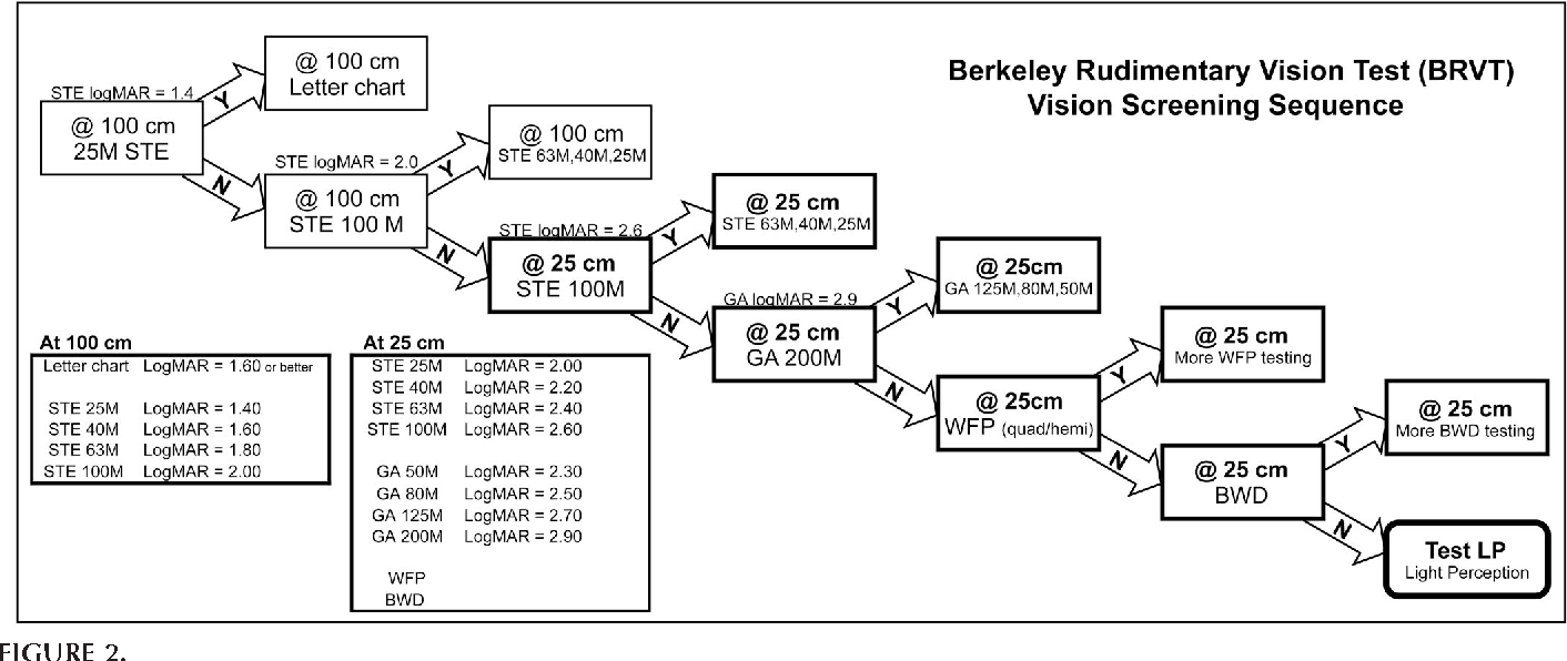 The berkeley rudimentary vision test semantic scholar figure 2 nvjuhfo Gallery