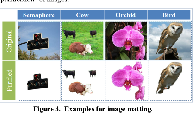 Figure 3. Examples for image matting.