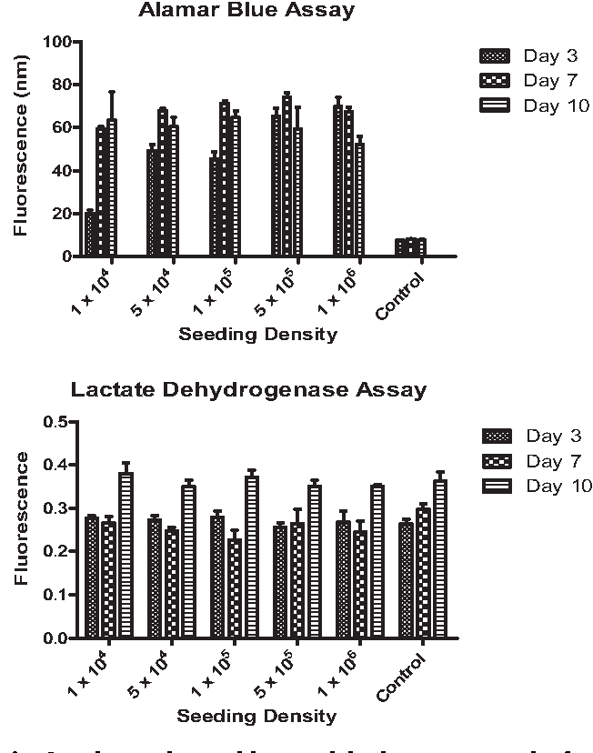 Fig. 6 e alamarBlue and lactate dehydrogenase results for seeding density study.