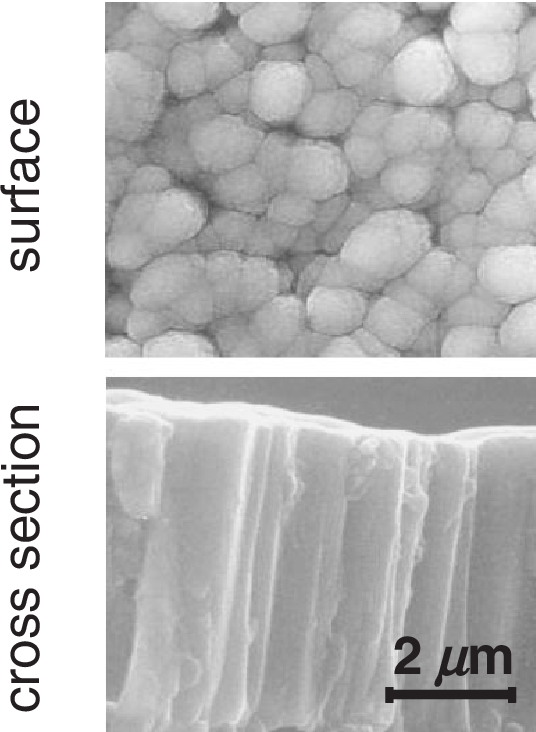 Fig. 3 Microstructures of films deposited with WS ¼ 50W without bias.