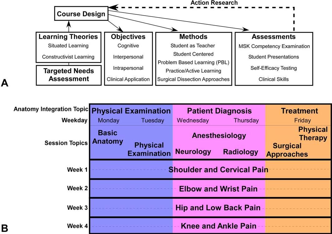 Anatomy integration blueprint: A fourth-year musculoskeletal anatomy ...