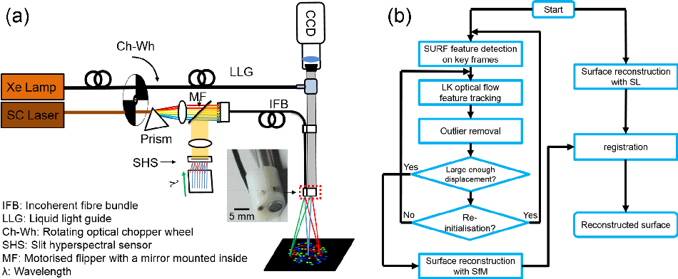 Figure 1 for Endoscopic Depth Measurement and Super-Spectral-Resolution Imaging