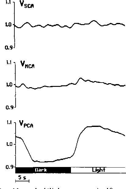 FIGURE 4. Mean darkllight response in 10 normal subjects with at least 16 cycles for each individual. Averaged and filtered blood flow velocities are shown for posterior cerebral arteries (VKA), middle cerebral arteries (VMCA), and superior cerebellar arteries (V^^.